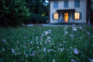 Blog Number 40 - Home2