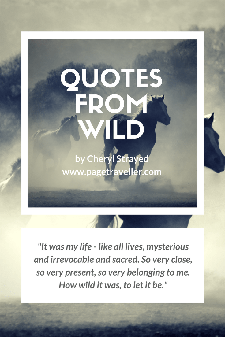 quotes from wild cheryl strayed belonging sacred