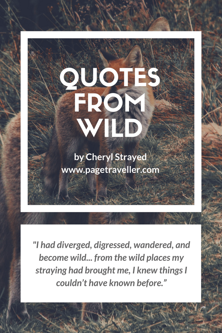quotes from wild cheryl strayed wander stray