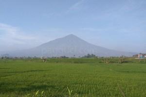 sejarah gunung cikuray