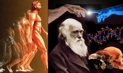 teoria_evolutiva