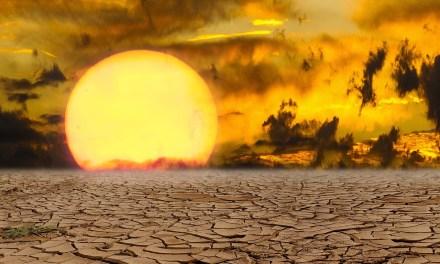 UNICEF. La crisi climatica è una crisi per i diritti dell'infanzia