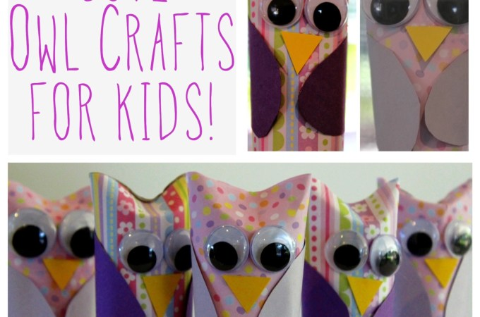 Toilet Paper Roll Owls…such a Hoot