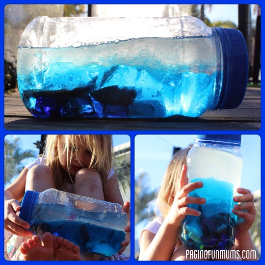 Ocean Discovery Bottle - Perfect for baby's sensory play!