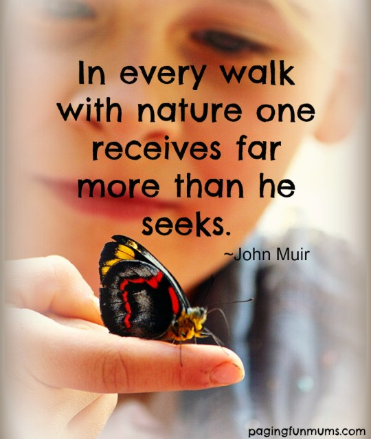 In every walk with nature one recieves more than he seeks. John Muir