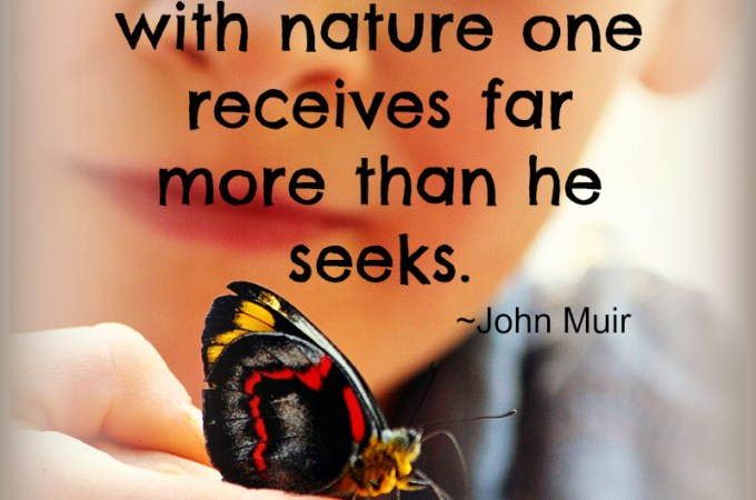 Lovely Nature Quote