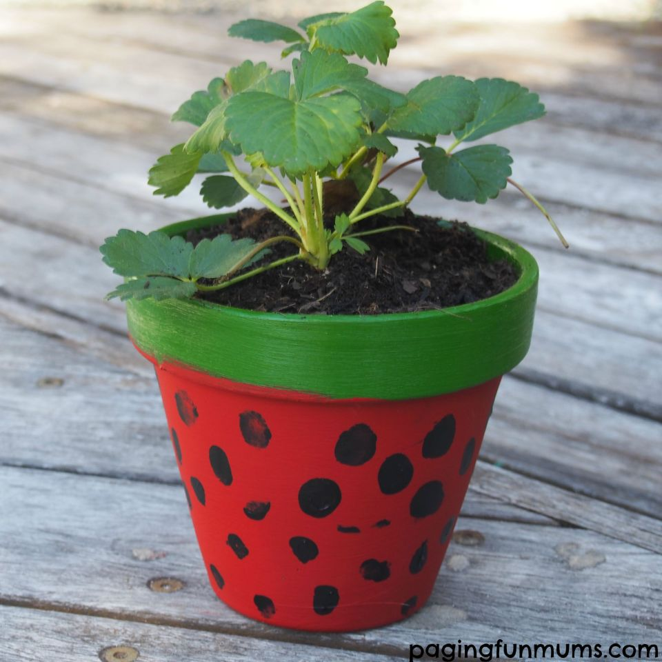 "Teacher apreciation gift idea! The whole class could leave their thumprint on this pot with a nice card saying ""Thank you for helping us grow!""."