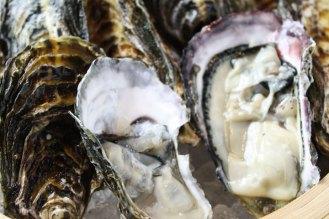 三陸生牡蠣