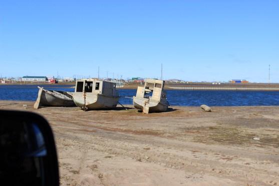 junk boats near a lagoon