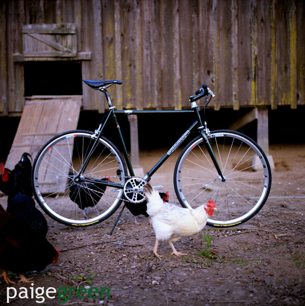 paigegreen-soulcraft_0014.jpg