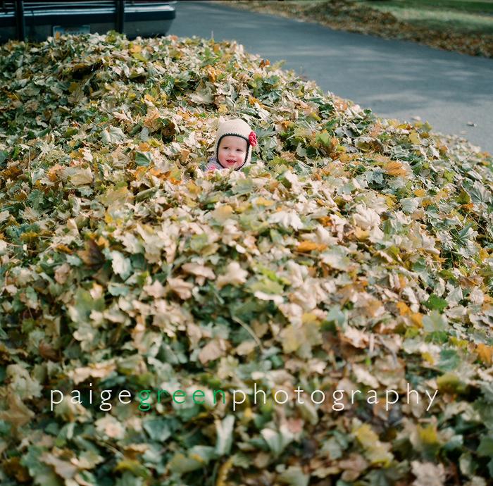 margot-leaves09-82920004