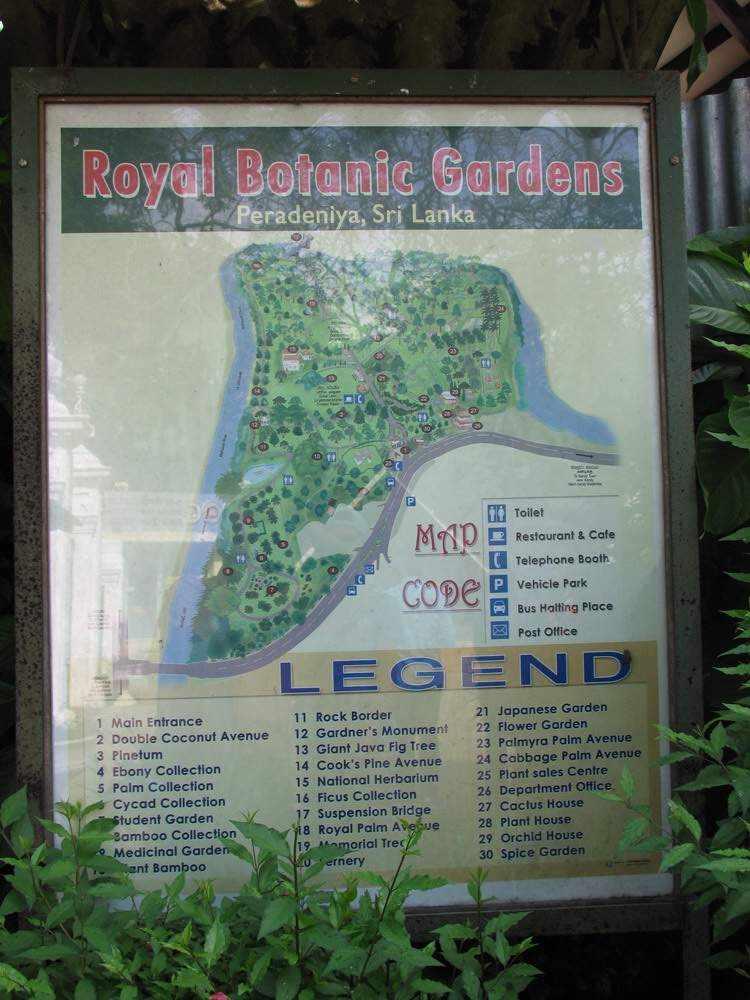 Схема Перадения, Шри Ланка (Royal Botanic Garden, Peradeniya, Sri Lanka)