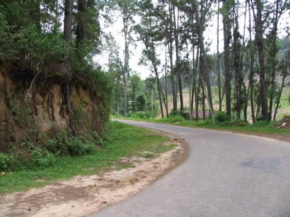 Шри Ланка (Sri Lanka)