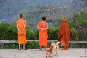 Монахи Ват Татон