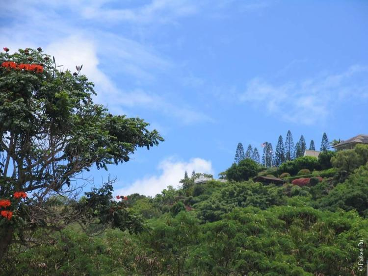Дом Элвиса Пресли на холме, Оаху, Гавайи