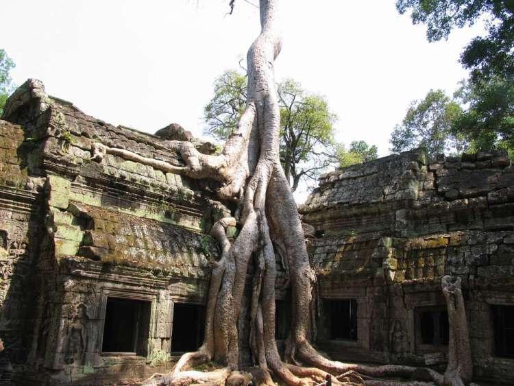 Камбоджа нужна ли виза