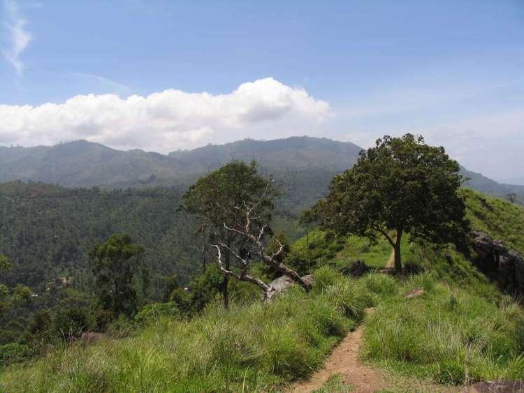 Малый пик Адама, Элла, Шри-Ланка 14