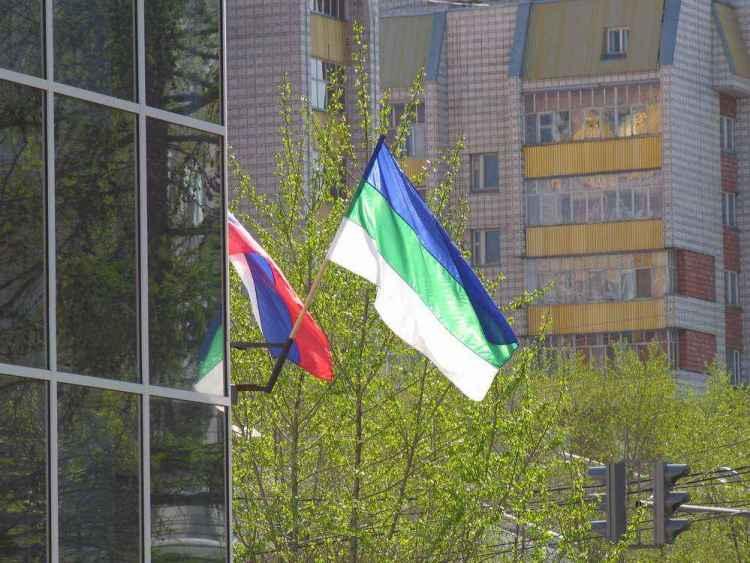 сыктывкар флаги
