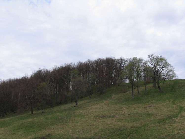 Плещеево озеро - Александрова гора, она же Лысая или Ярилина