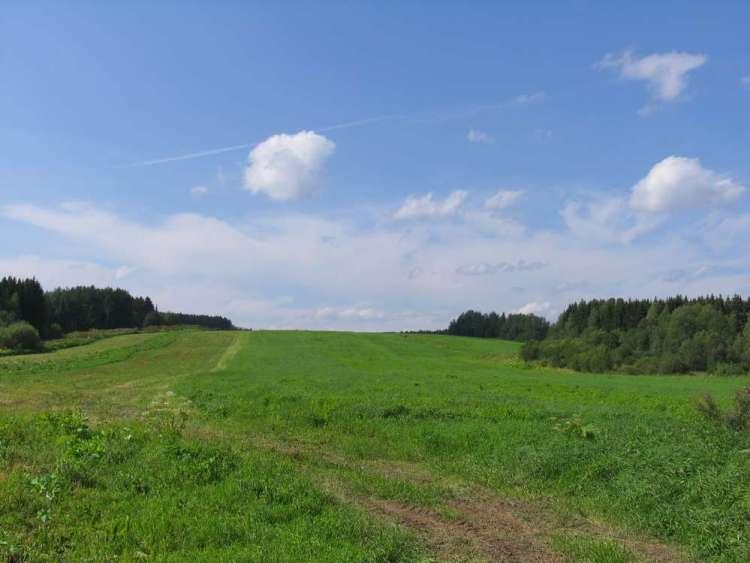 сыктывкар - поле