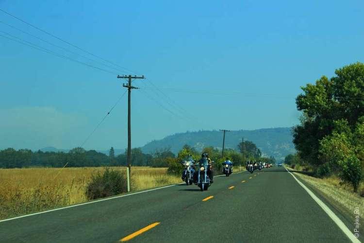 Мотоциклы на дороге