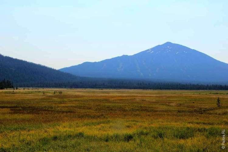 Желтое поле и горы