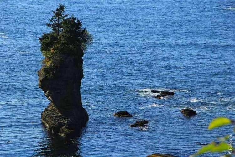Одинокая скала у берега