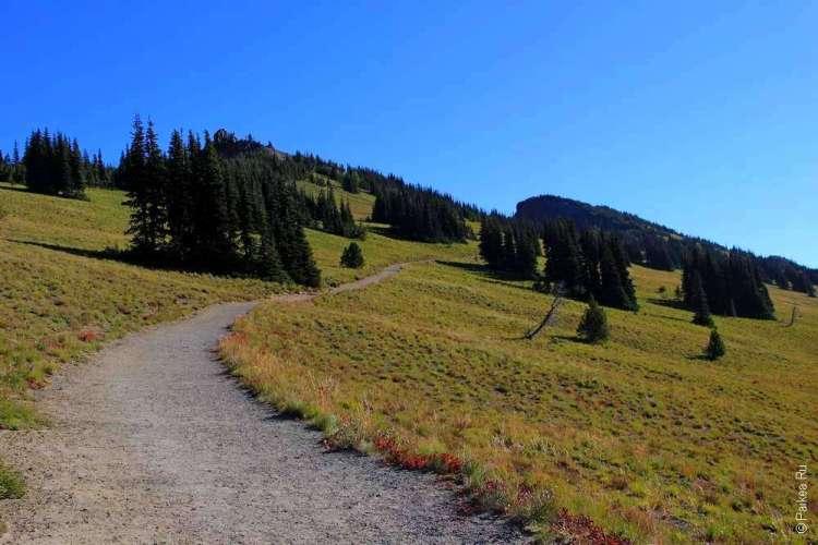 маунт рейнир пеший маршрут в горы
