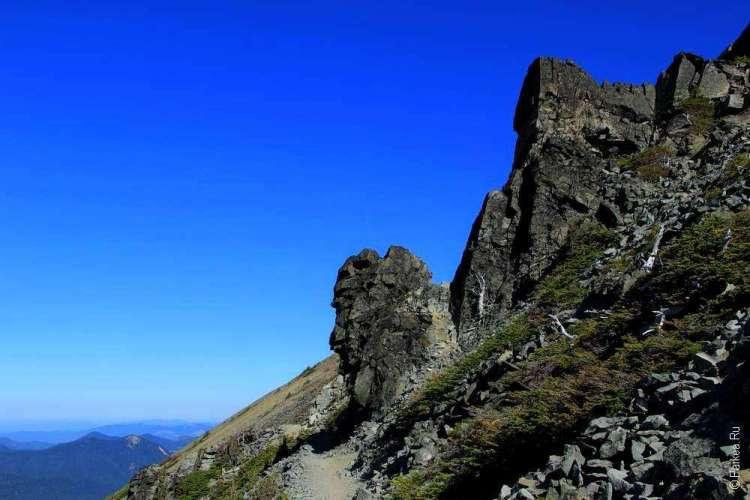 маунт рейнир пеший маршрут в горы на фото