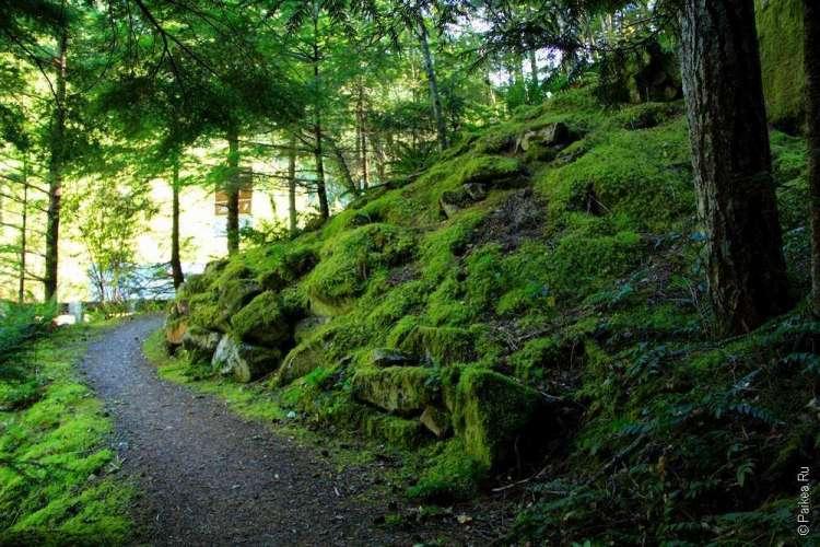 Национальный парк Норт-Каскейдс, Северные Каскады, North Cascades National Park 04