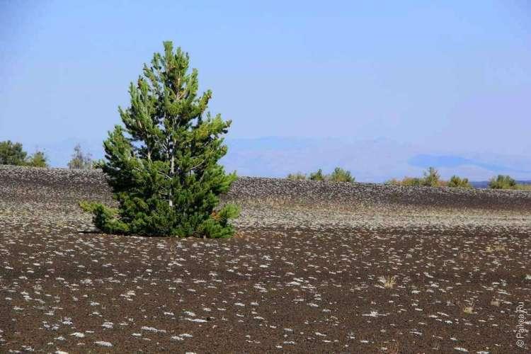 Лунные кратеры в штате Айдахо США / Craters of the Moon National Monument 15
