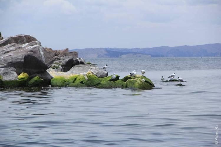Озеро Титикака 8