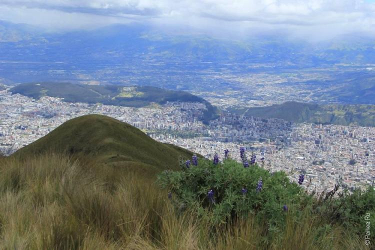 Эквадор фото