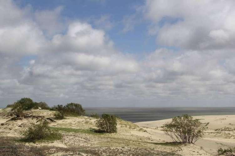 песчаный берег Куршская Коса