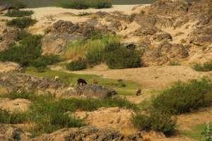 Дно реки Салуин