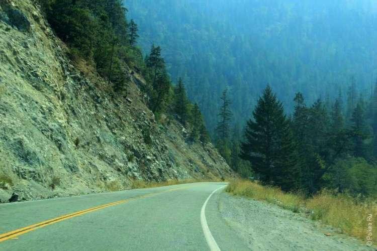 Лес и горная дорога
