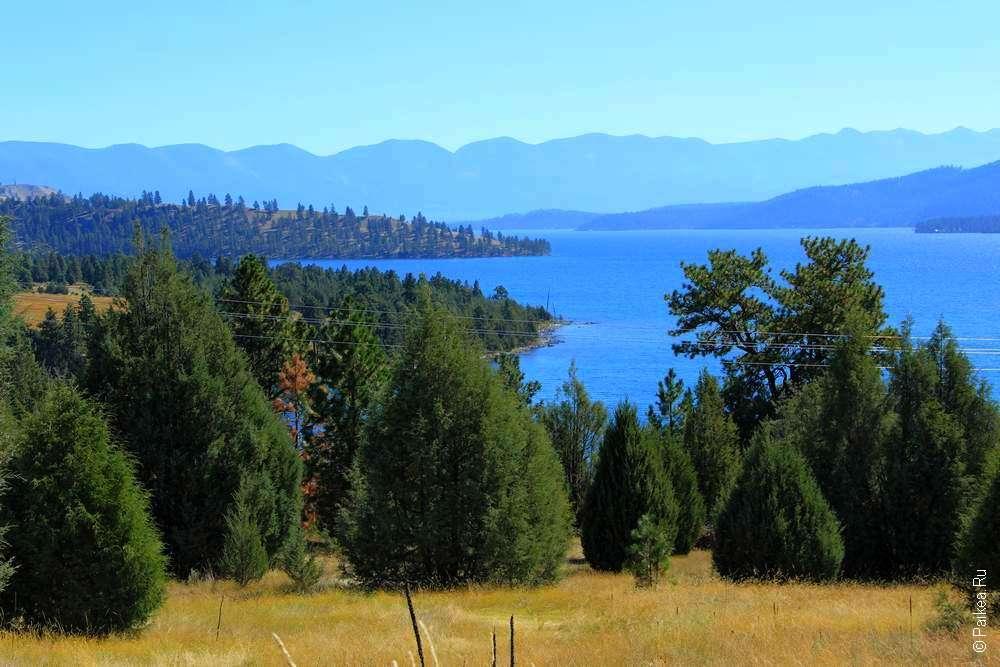 Озеро Макдональд - Лес на берегу озера в штате Монтана