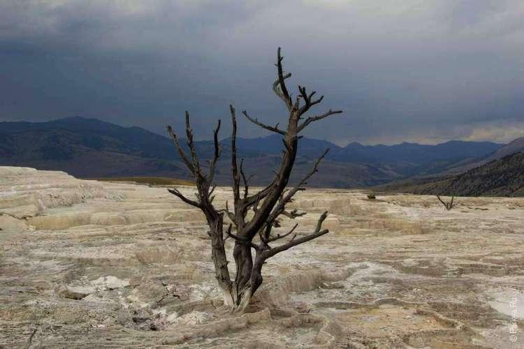 Геотермальные источники Мамонт Йеллоустоун США 05