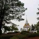 Национальный парк Пу Рыа – сосновый лес в самом холодном месте Таиланда