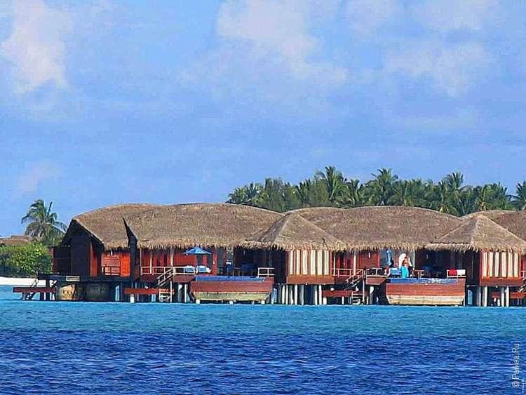 Отдых на Мальдивах 5