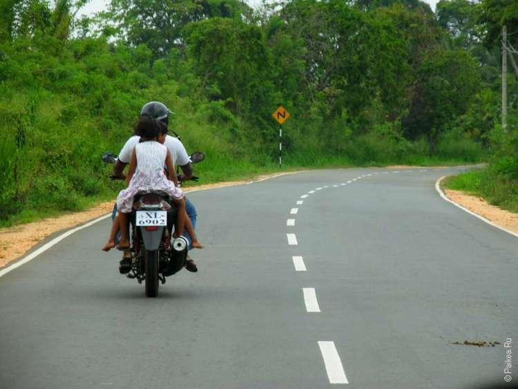 Шри-Ланка - наш отзыв о водителе-гиде Акиле