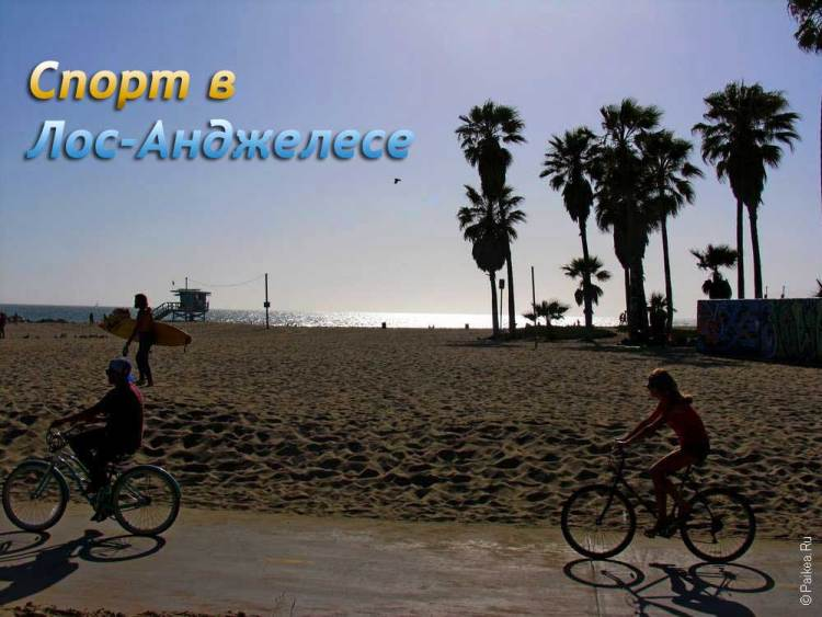 Лос-Анджелес спорт, игры, матчи, клубы