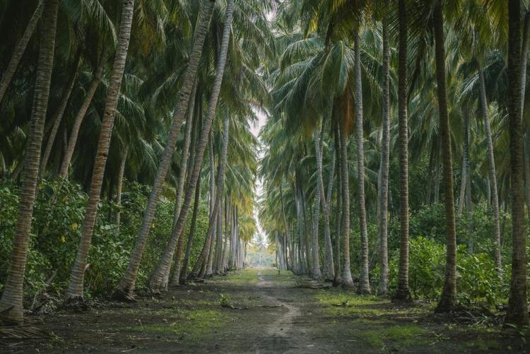 Недорогие острова на Мальдивах Ган