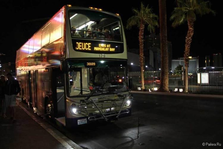 лас-вегас автобус