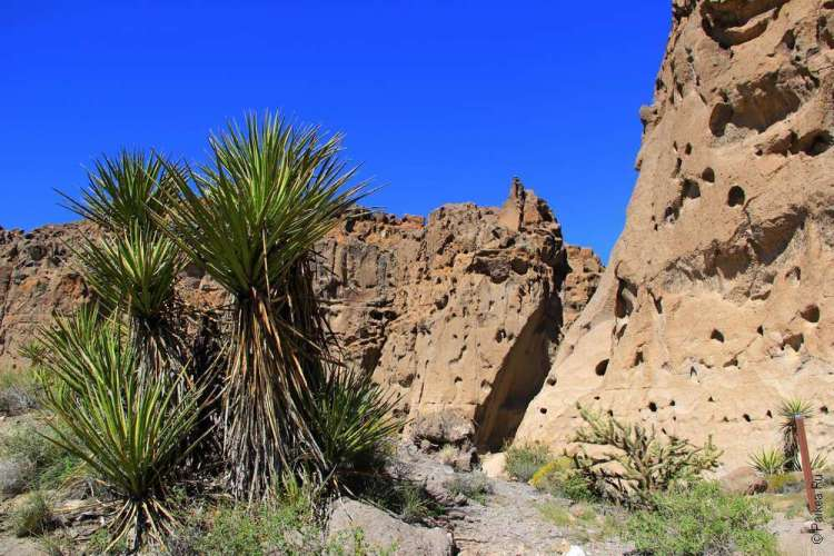 Каньон в пустыне Мохаве США