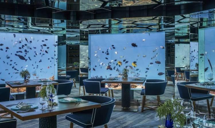 Мальдивы отель с домашним рифом анантара