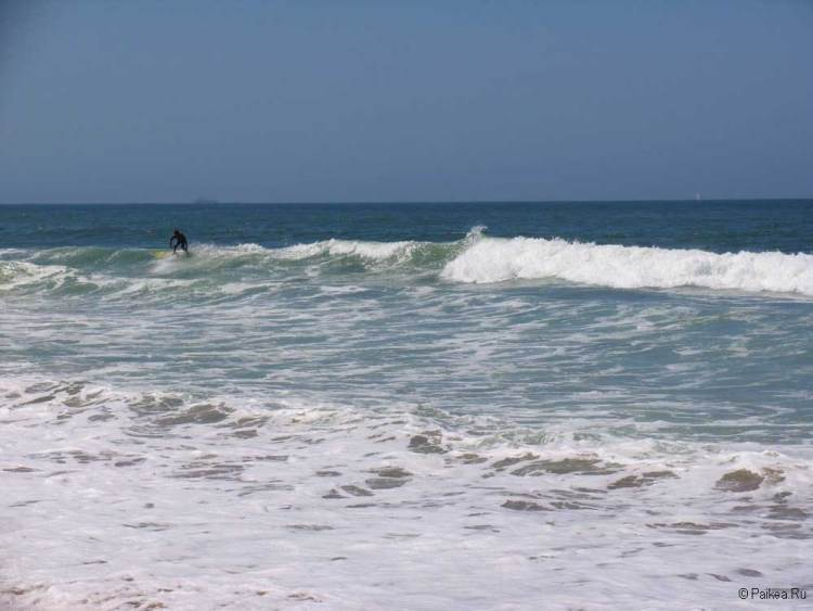 лос анджелес серфинг