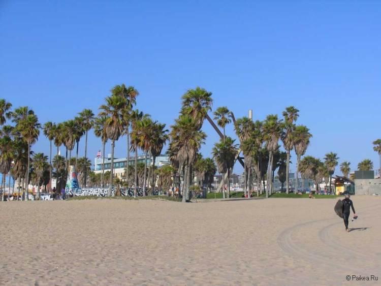 венис бич пляж