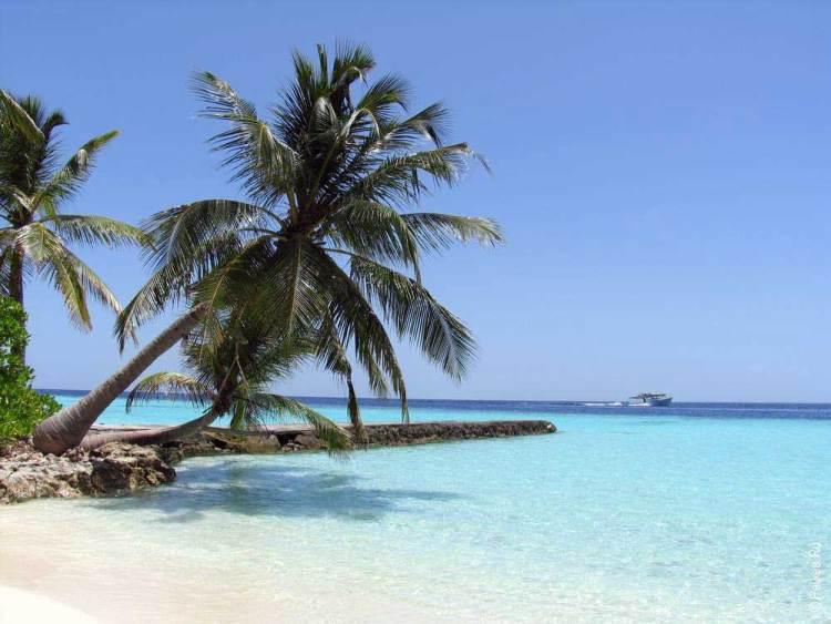 Туры на Мальдивы недорого