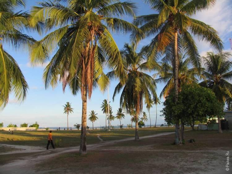 Отдых в гестхаусе на Мальдивах 03